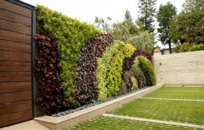 LBM_62_Walls_Obagi Skincare_Living Wall_By Jody Tiongco-5