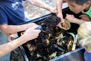 Water_TOTW Elementary_Compost_By Jody Tiongco-17