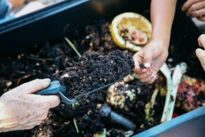 compost-is-earthy