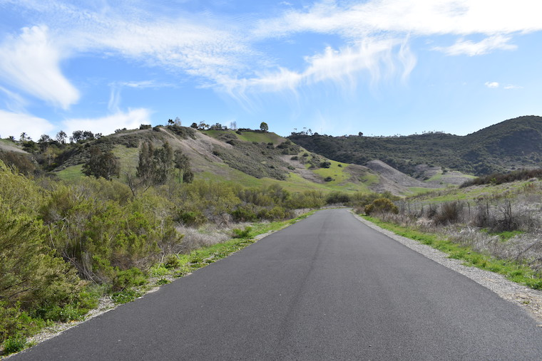 Aliso Creek Trail_credit Sharon Stello