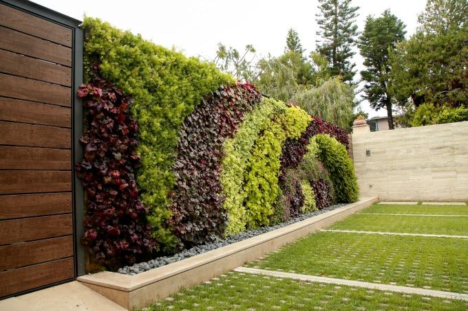 LBM_62_Walls_Obagi Skincare_Living Wall_By Jody Tiongco-5