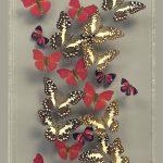butterfly art African Fire Wave_credit Ken Denton Jr.