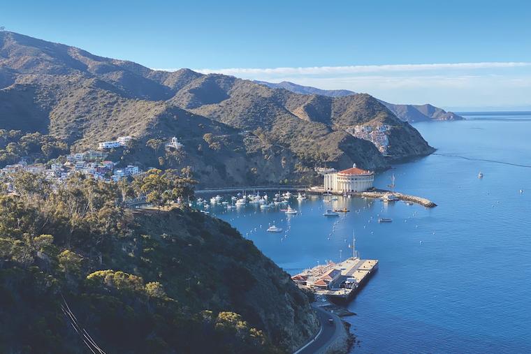 Catalina Island_credit Tess Hezlep
