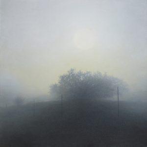 Morning Mist_credit David Kizziar