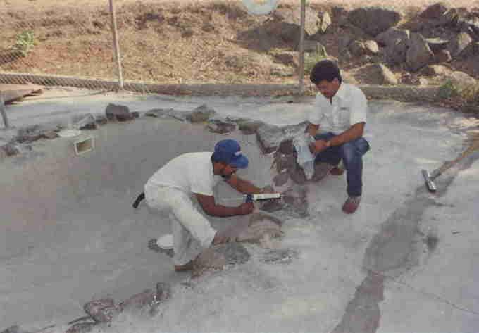 First Concrete Pool at PMMC_credit PMMC