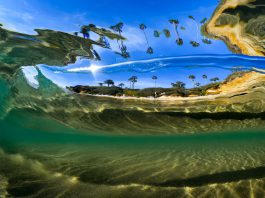 Life In The Bubble-credit Sean Hunter Brown